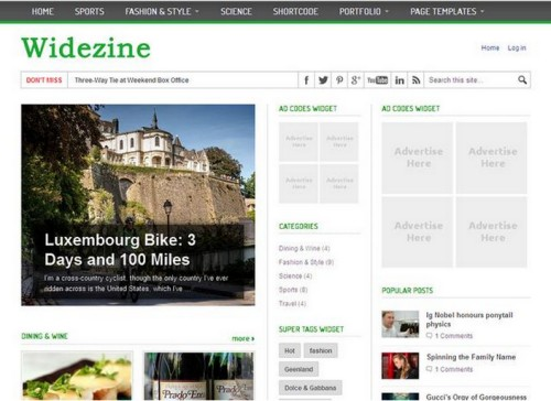 WideZine v1.0 WordPress Theme