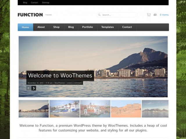 Function v1.0.1 for WordPress